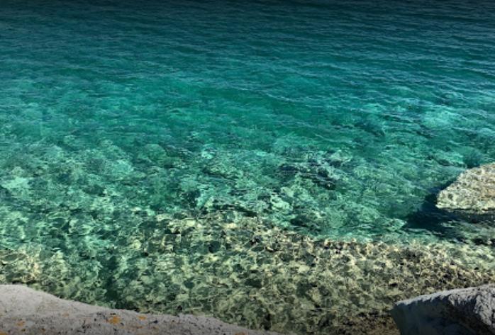 Foça Sazlıca Camping - Foça Denize Girilecek Yerler